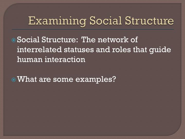 Examining Social Structure