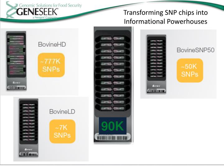 Transforming SNP chips into
