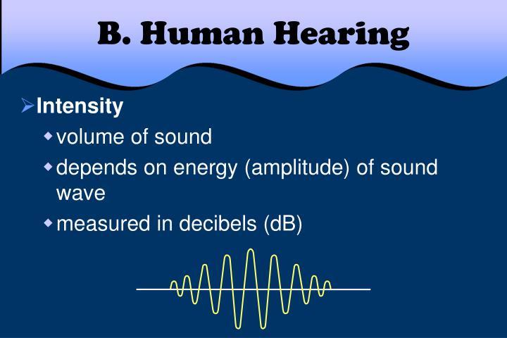 B. Human Hearing