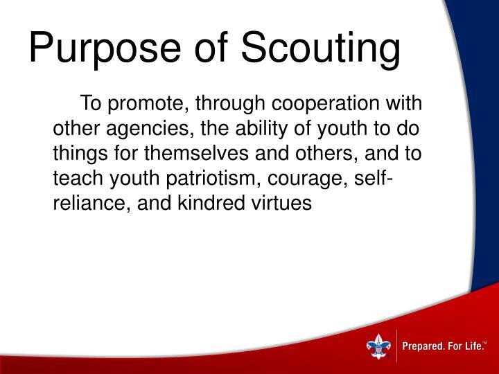 Purpose of Scouting