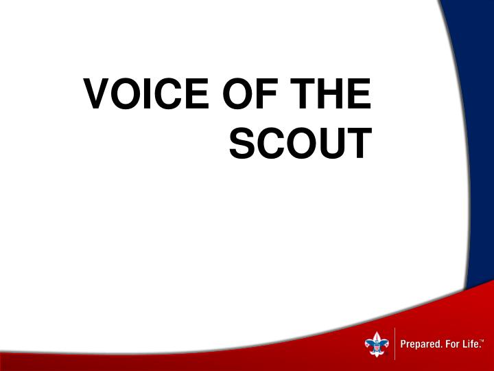 Voice of the scout