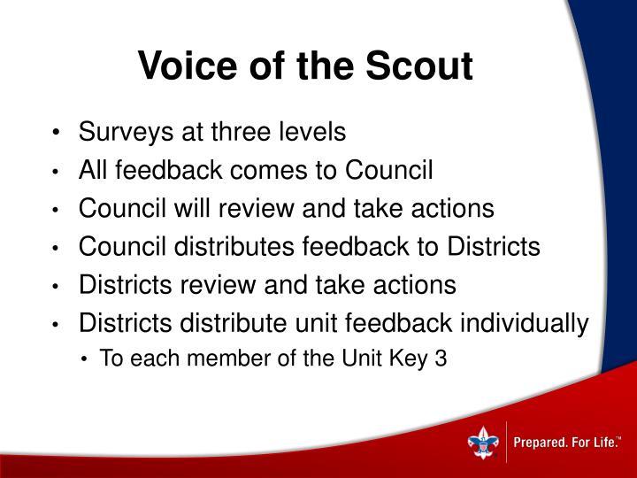 Surveys at three levels