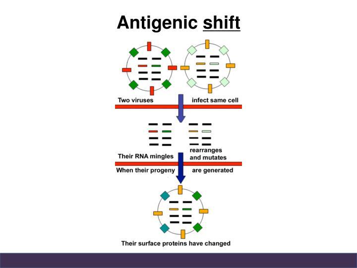 Antigenic