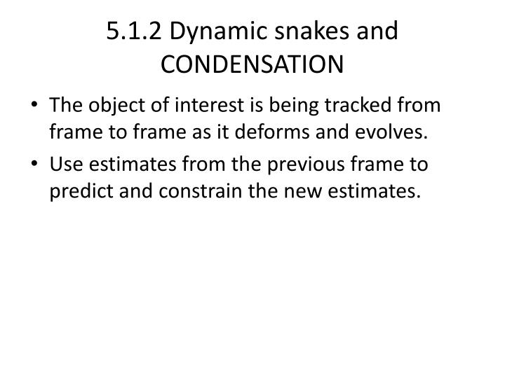 5.1.2 Dynamic snakes and CONDENSATION