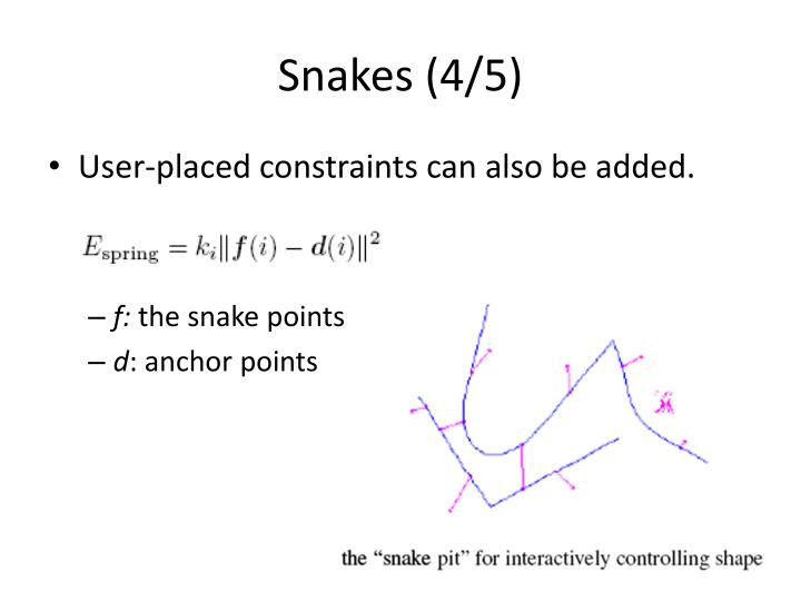 Snakes (4/5)