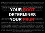 your root determines your fruit