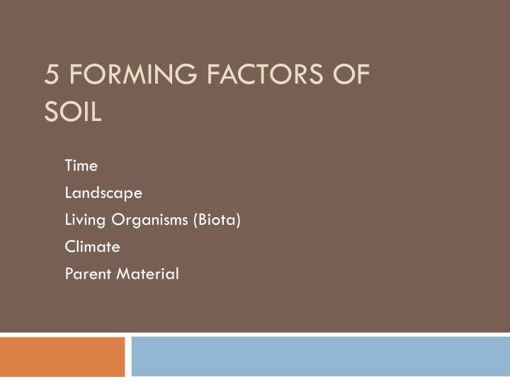 5 forming factors of soil
