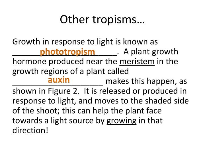 Other tropisms…