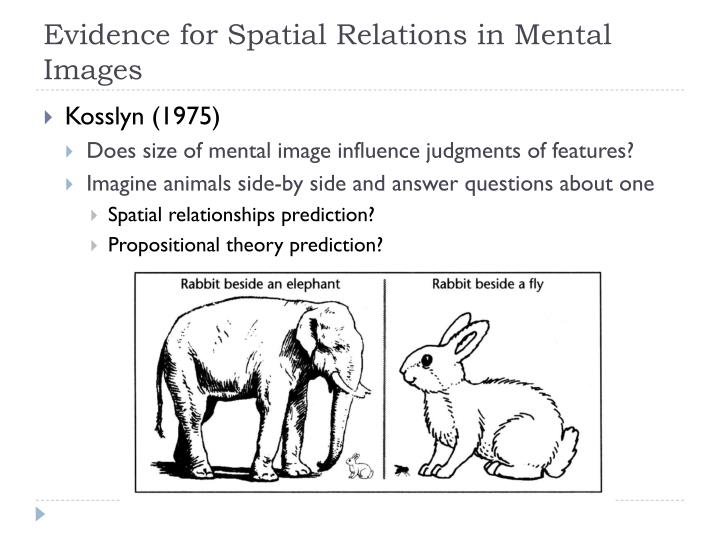 Evidence for Spatial Relations in Mental Images