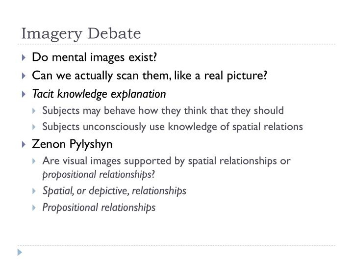 Imagery Debate