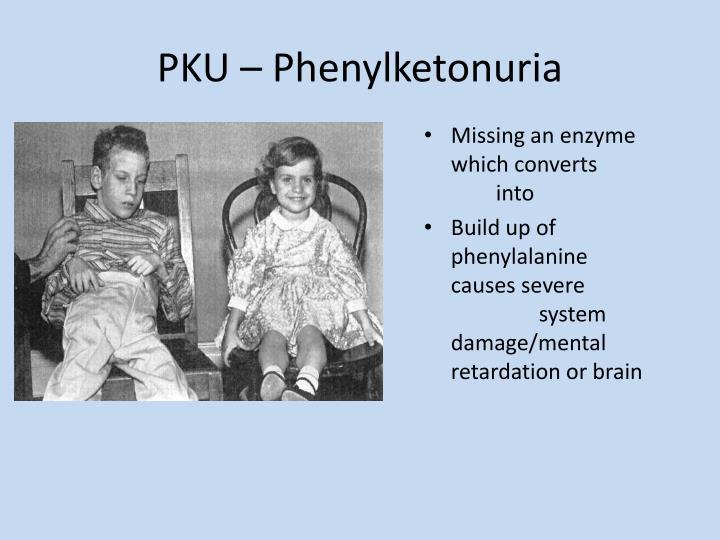 PKU – Phenylketonuria