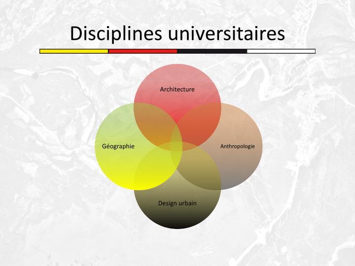 Disciplines universitaires