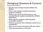 workgroup questions concerns assessment and evaluation