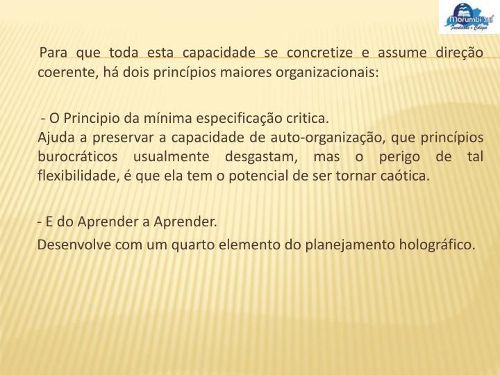 Para que toda esta capacidade se concretize e assume direção coerente, há dois princípios maiores organizacionais: