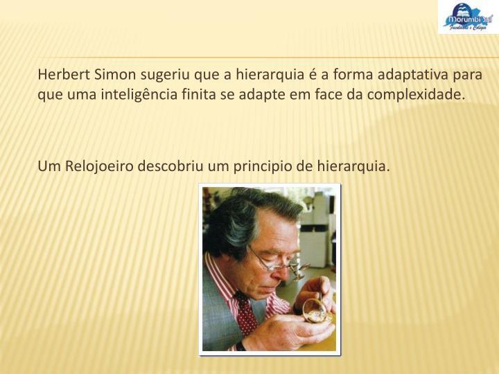 Herbert Simon sugeriu que a hierarquia é a forma adaptativa para que uma inteligência finita se adapte em face da complexidade.