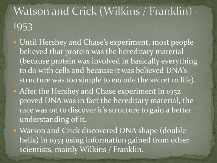 Watson and Crick (Wilkins / Franklin