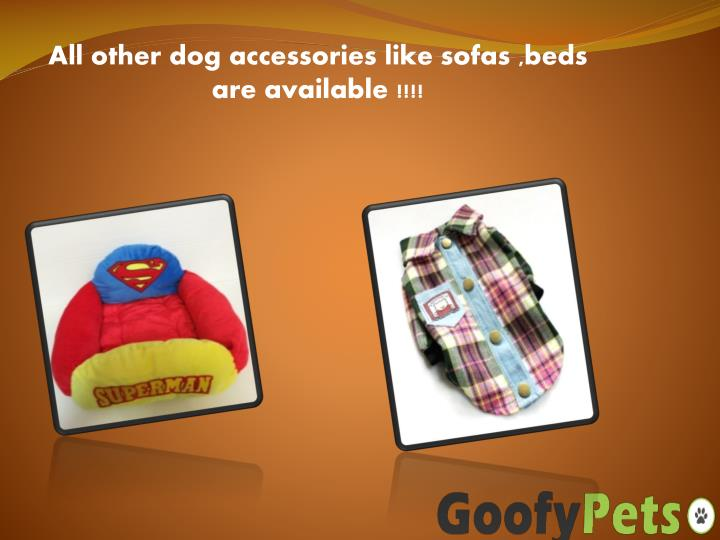 All other dog accessories like sofas ,beds are available !!!!