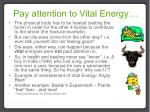 pay attention to vital energy