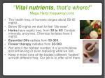 vital nutrients that s where mega hertz frequency cont