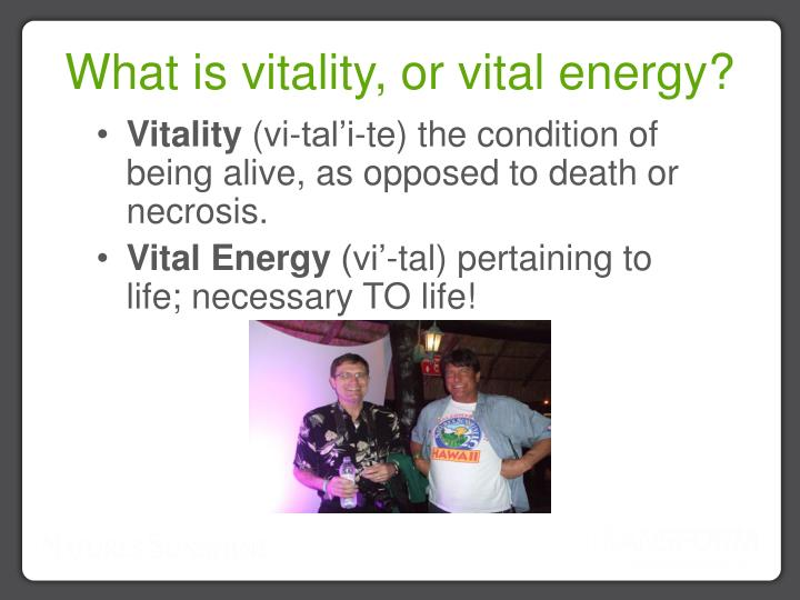What is vitality, or vital energy?