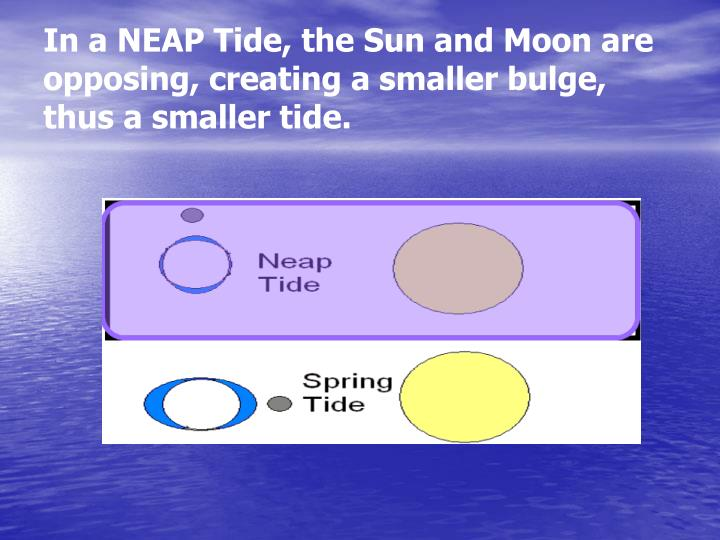 In a NEAP Tide, the Sun and Moon are opposing, creating a smaller bulge, thus a smaller tide.