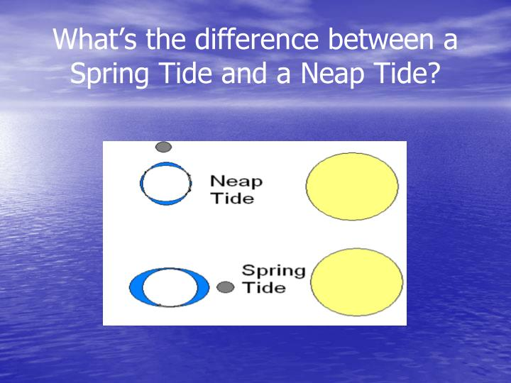 What's the difference between a Spring Tide and a Neap Tide?