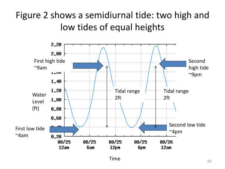 Figure 2 shows a semidiurnal tide: two high and low tides of equal heights