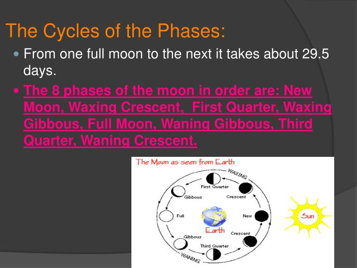 The Cycles of the Phases: