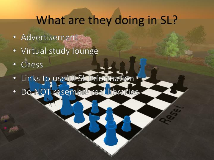 What are they doing in SL?