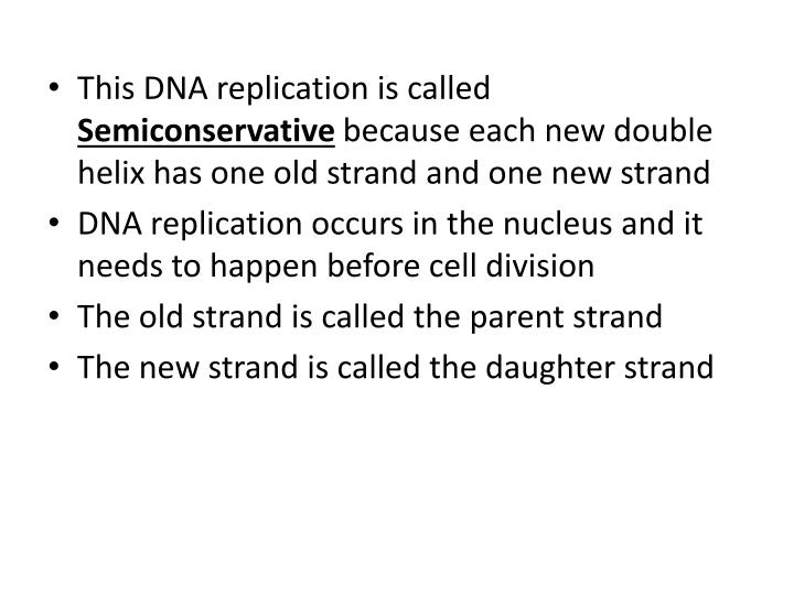 This DNA replication is called