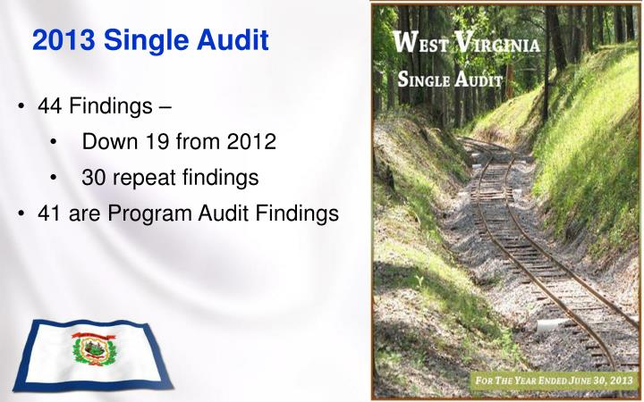 2013 Single Audit