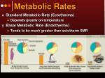 metabolic rates