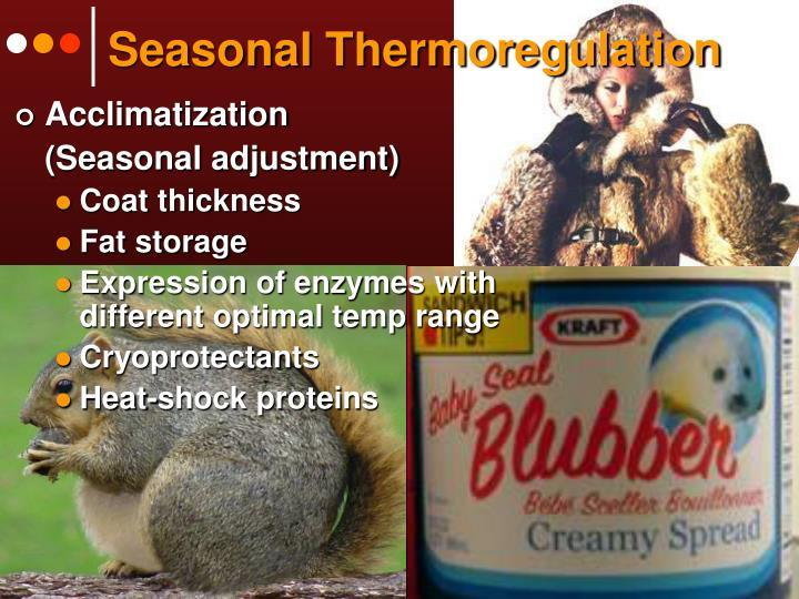 Seasonal Thermoregulation
