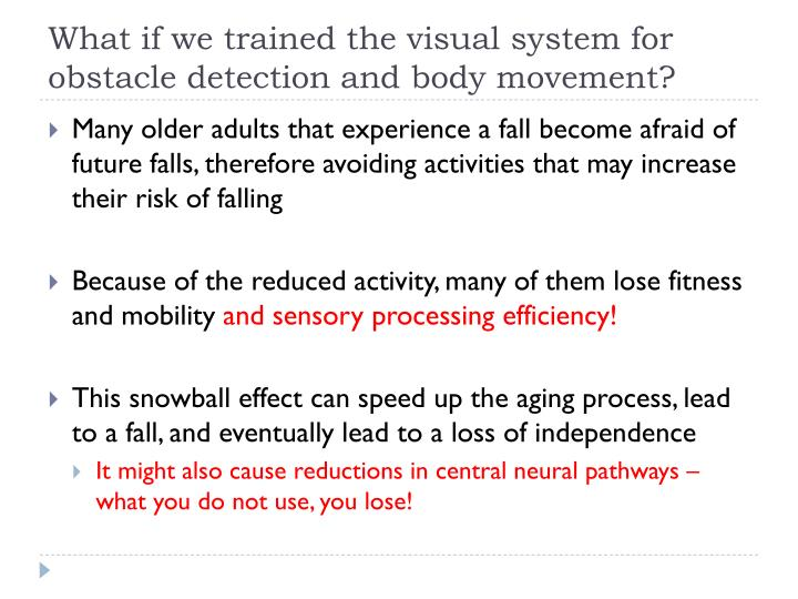 What if we trained the visual system for obstacle detection and body movement?
