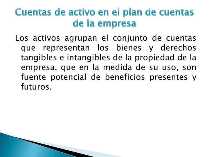 Cuentas de activo en el plan de cuentas de la empresa