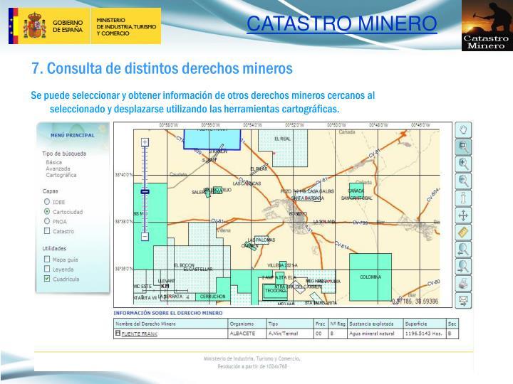 7. Consulta de distintos derechos mineros