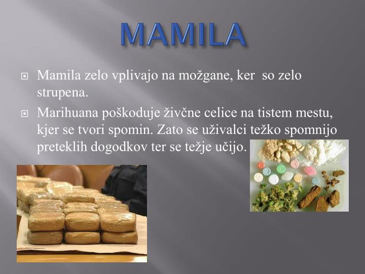 MAMILA