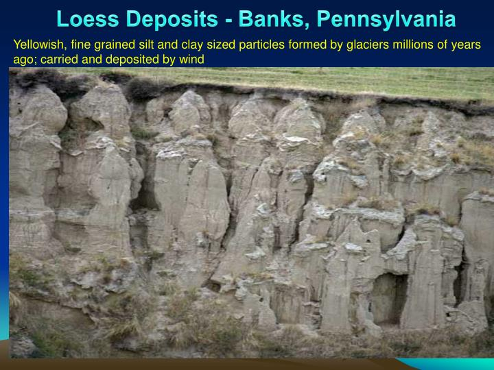 Loess Deposits - Banks, Pennsylvania