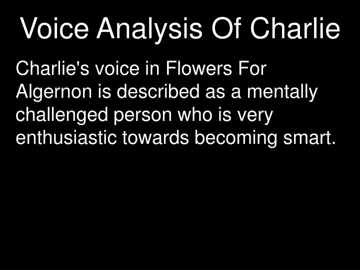 Voice analysis of charlie
