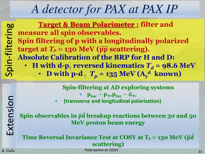A detector for PAX at PAX IP