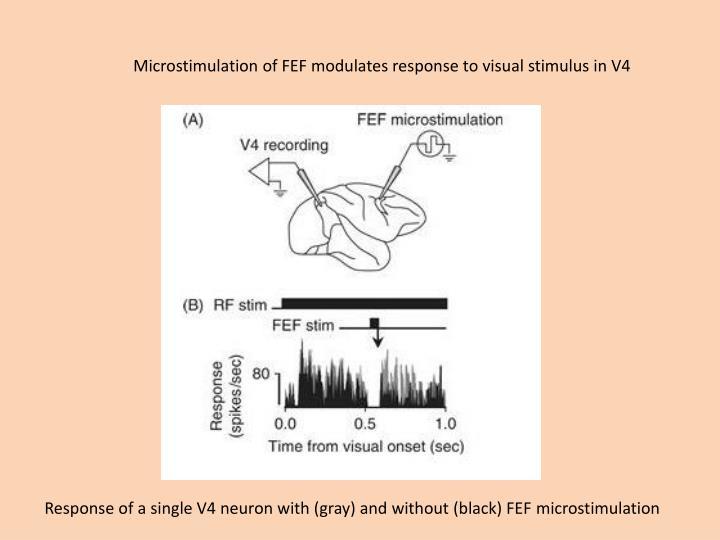 Microstimulation