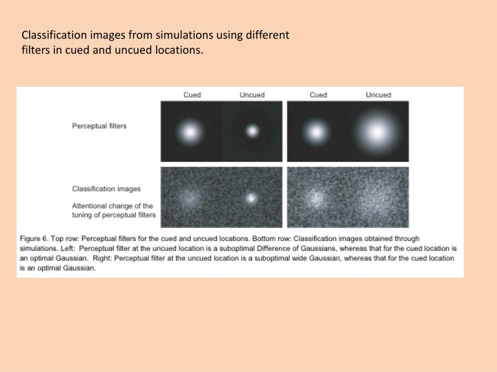 Classification images from simulations using different