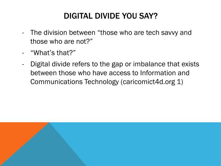 Digital Divide you say?