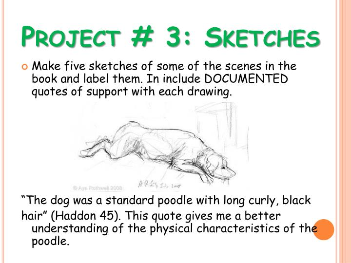 Project # 3: Sketches