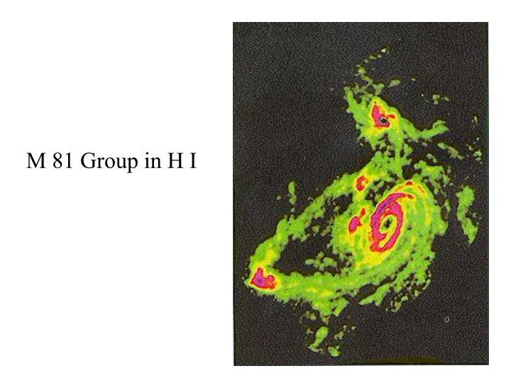 M 81 Group in H I