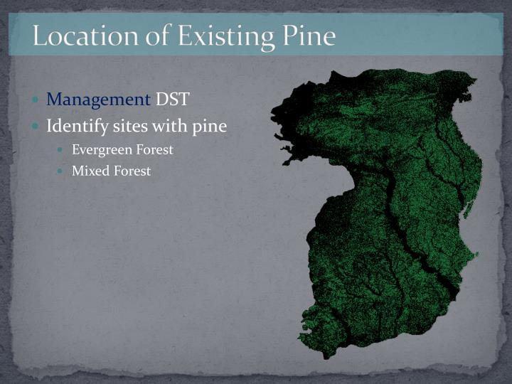 Location of Existing Pine