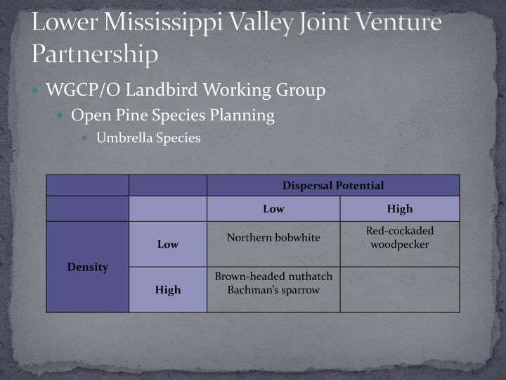 Lower Mississippi Valley Joint Venture Partnership