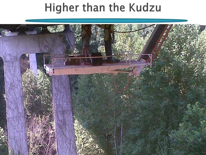 Higher than the Kudzu