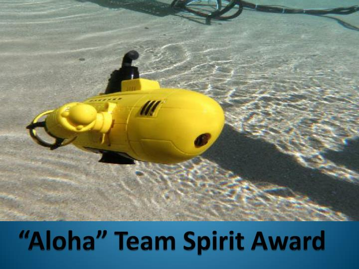 """Aloha"" Team Spirit Award"