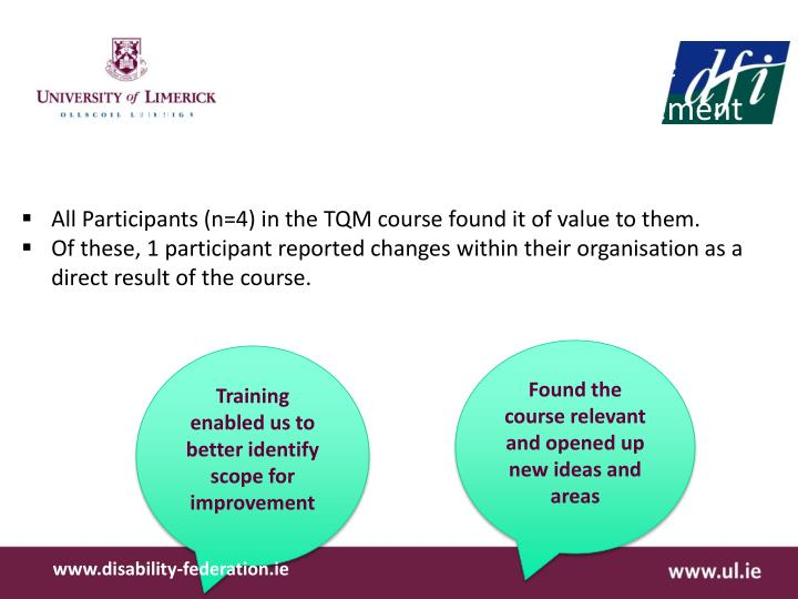 Findings from Open Interviews on the Introduction to Total Quality Management (TQM) process